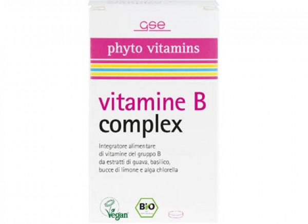 Vitamina B Complex 60capsule GSE