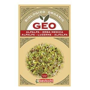 Semi di erba medica da germogliare 40g GEO
